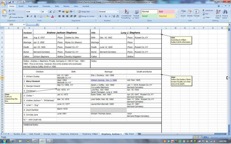 Organizing Family Group Sheets and Timelines with Excel - The Shy