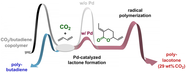 A new plastic from carbon dioxide - Technology Org