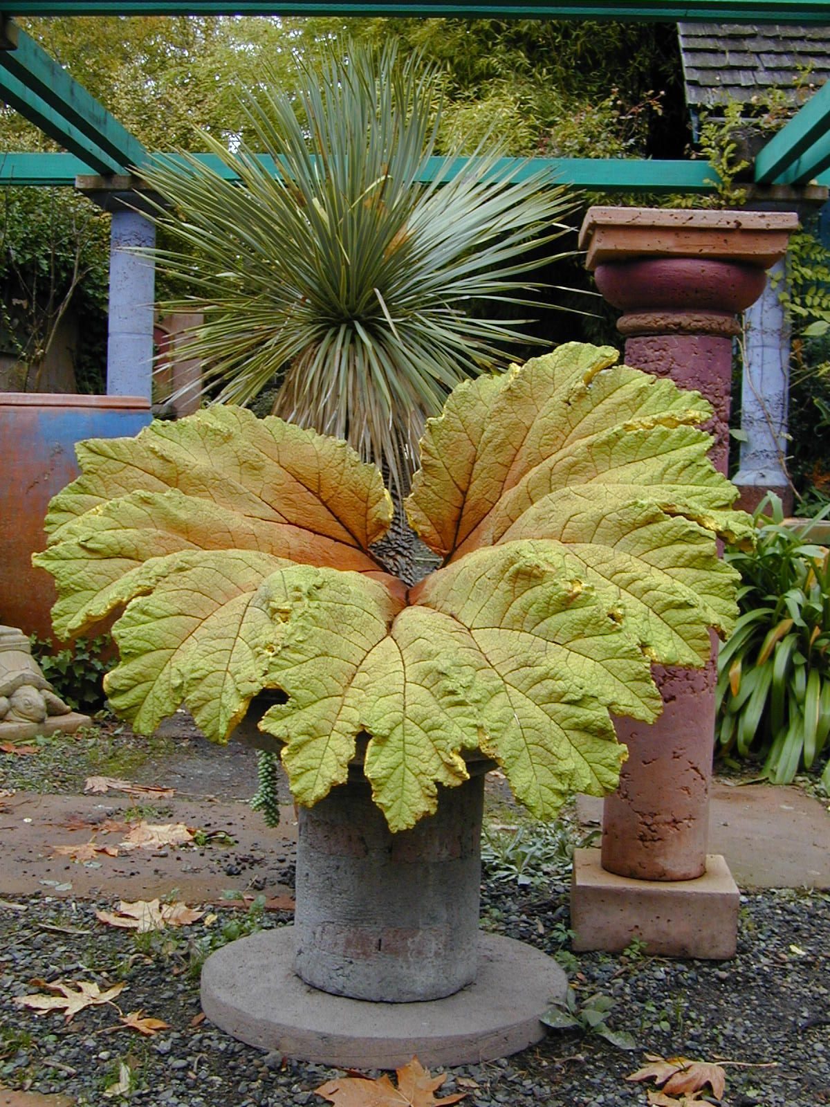 this huge leaf is cast concrete and hand painted by Little