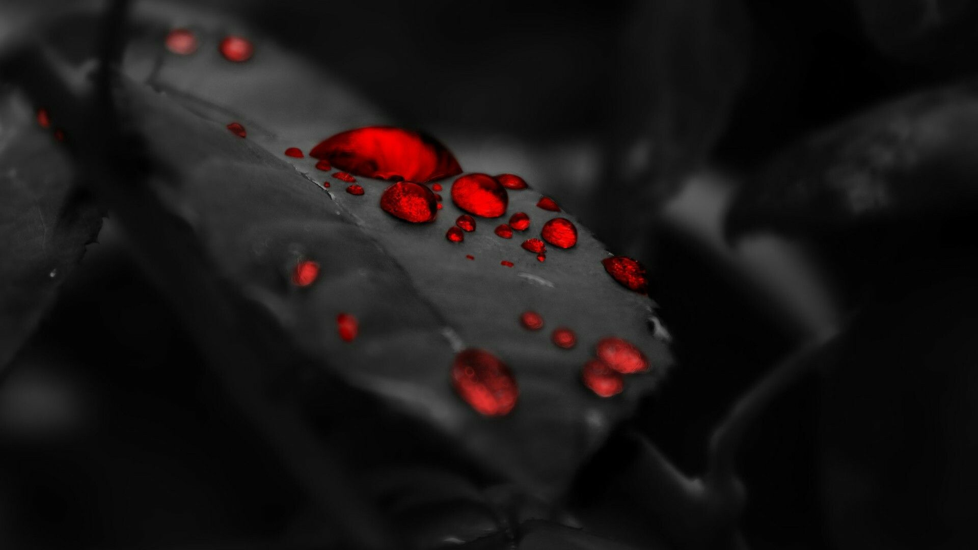 The Filtor Of Red And Black Is The Best For The Ediring Black Wallpaper 1080p Wallpaper Android Wallpaper Black