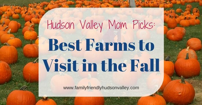 Best Hudson Valley Farms for Fall Family Fun