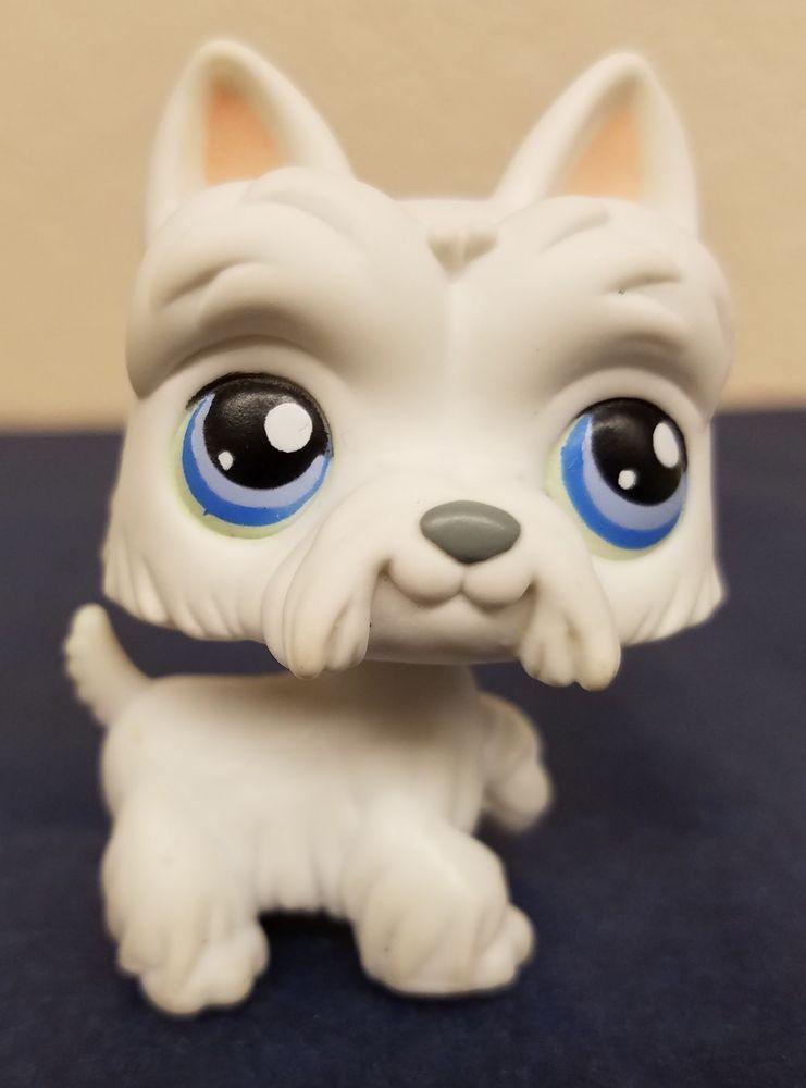 Littlest Pet Shop 24 White Scottie Dog With Blue Eyes Lps Ebay Scottie Dog Littlest Pet Shop Pet Shop