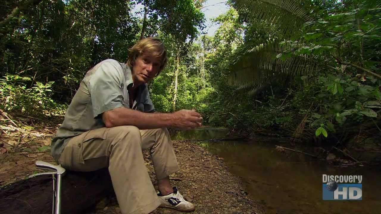 Austin Stevens In Search Of The Ultimate Pit Viper Pit Viper Viper Steven
