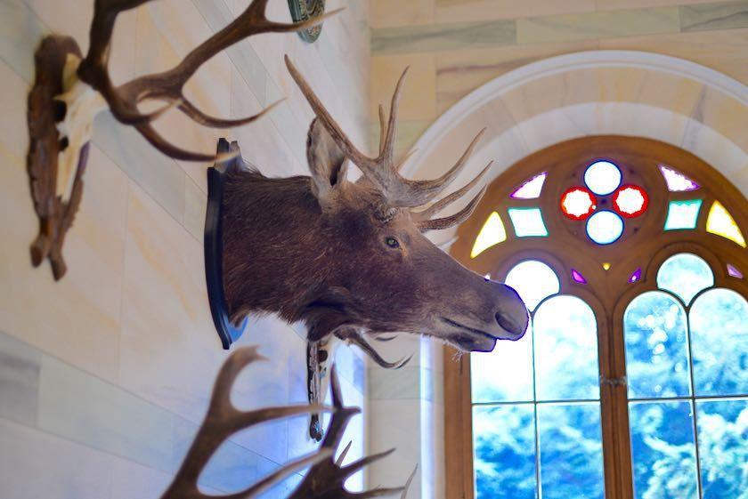 Hunting Seat Granitz, Jagdschloss Granitz