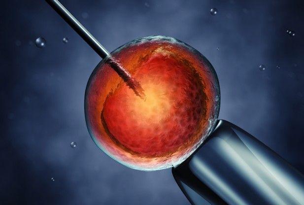 Инъекция сперматозоида в яице