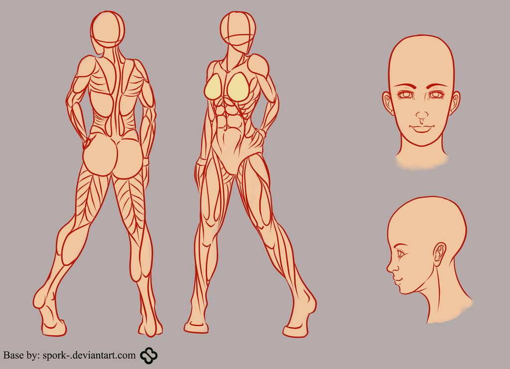 Pin de codes en anatomy, poses, and dynamics ref | Pinterest ...