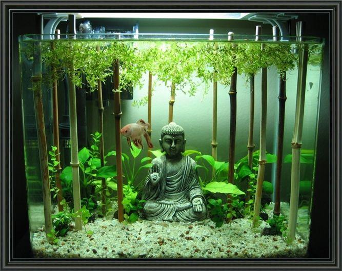 5 Gallon Aquarium Decorating Ideas Cool Fish Tanks Fish Tank Decorations Betta Fish Tank