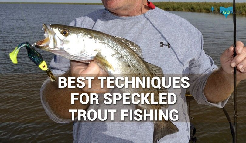 Best Techniques For Speckled Trout Fishing | Saltwater Wade Fishing