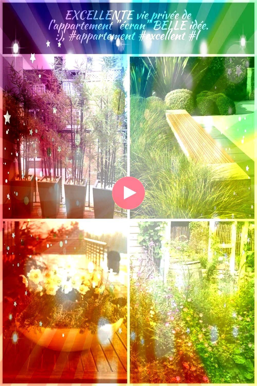 privée de lappartement écran BELLE idée    Pflanzen Terrasse EXCELLENTE vie privée de lappartement écran BELLE idée    Balcon De...