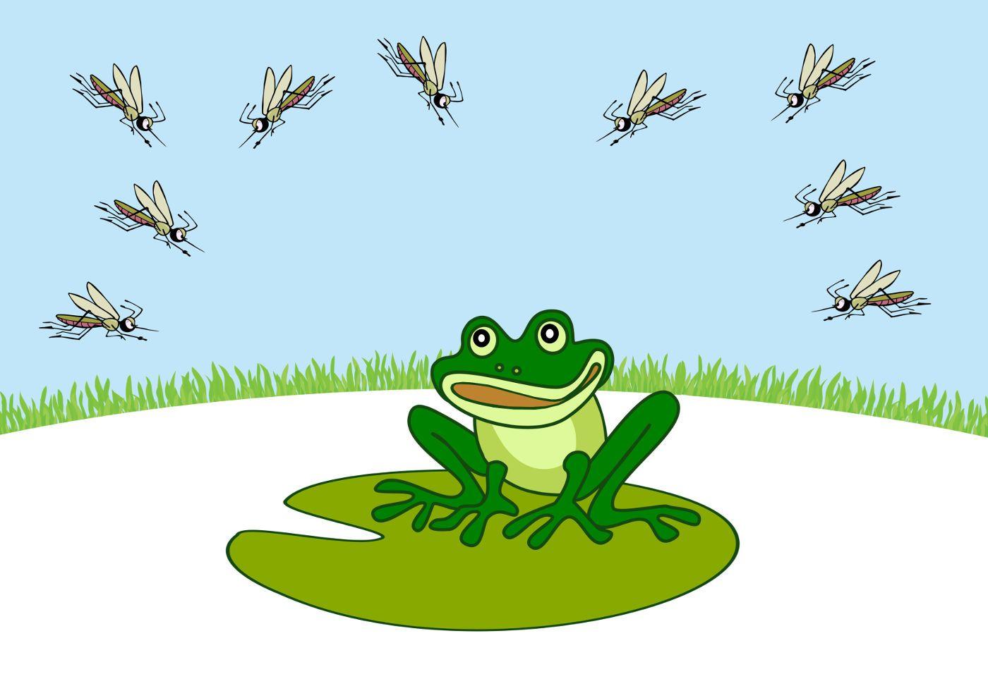 картинка про лягушек и комара делают
