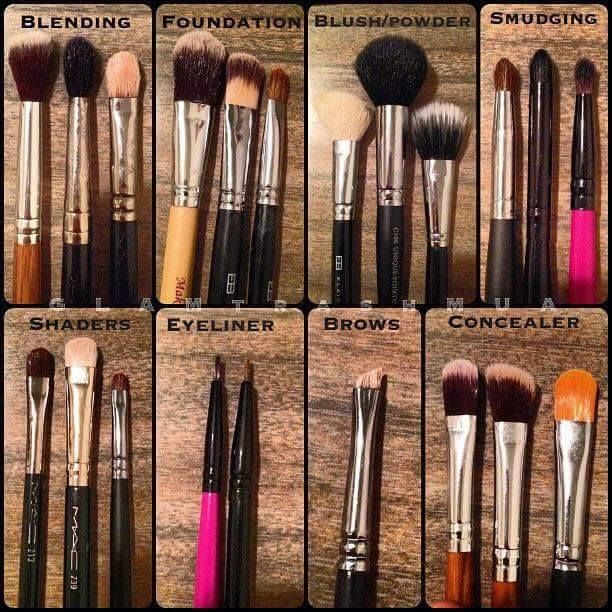 MAKEUP BRUSH GUIDE makeupnebbie beginnermakeup Makeup
