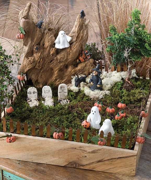 Miniature Garden For Halloween I Had An Idea To Do This First Time I Ve Seen It Done Halloween Fairy Garden Diy Halloween Fairy Garden Mini Fairy Garden