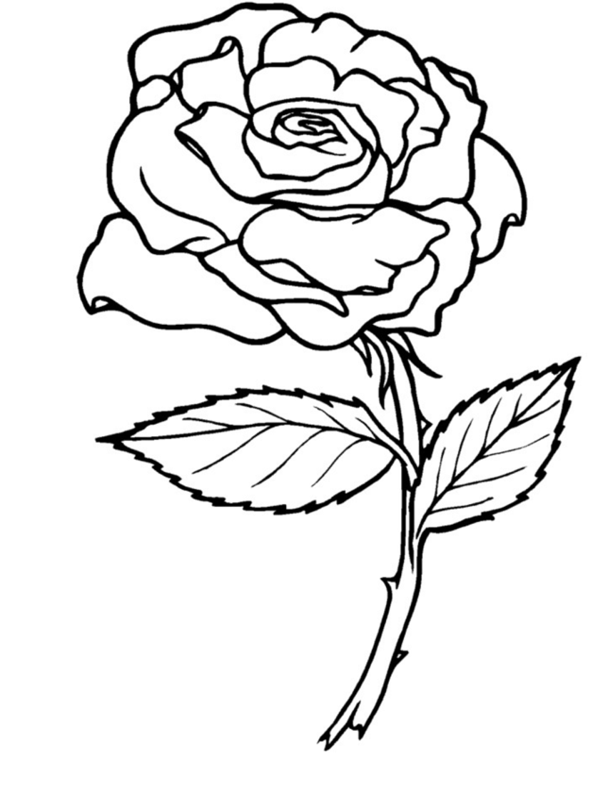 Heart rose banner colouring pages page 2