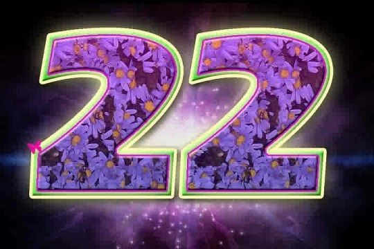date of birth 22 january numerology with future prediction