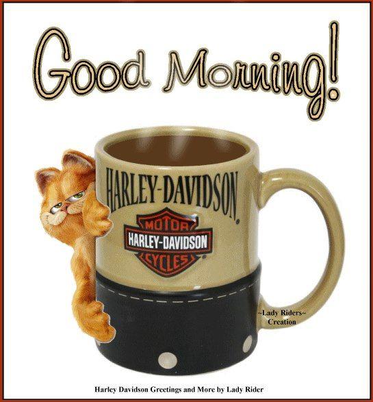 Good Morning Harley Davidson Quotes Biker Quotes Harley Davidson