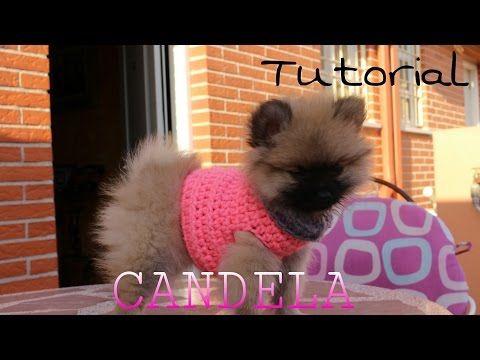 Cómo Hacer Un Sweater Chaleco Para Perritos 22 Youtube