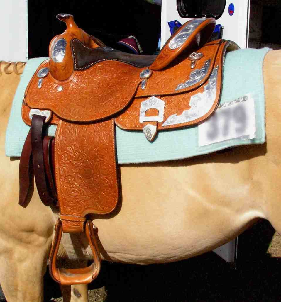 western saddle pictures - Google Search