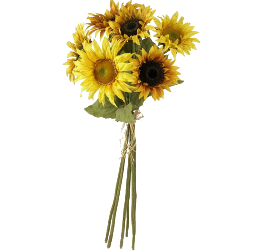 Pin by allisonp on ☆moodboard pngs☆ Sunflower bouquets