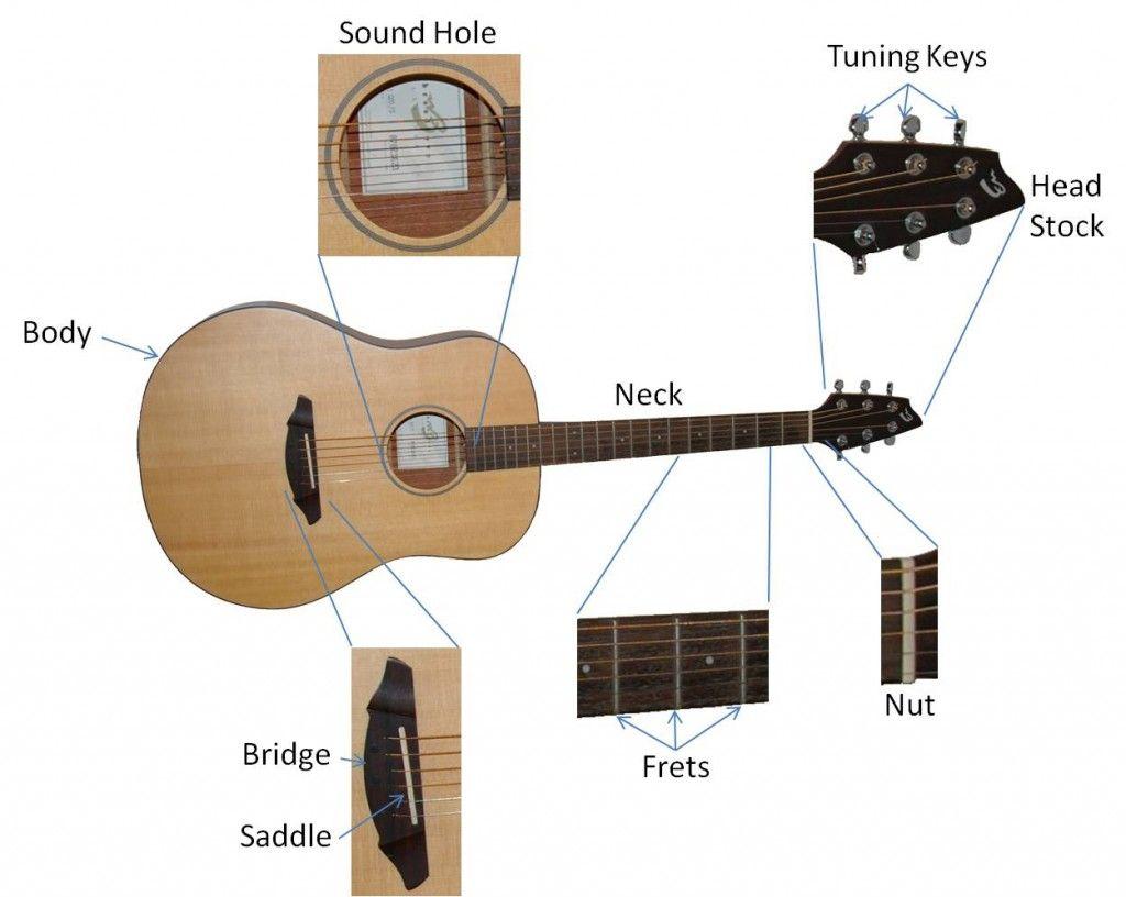 basic diagram parts of acoustic guitar [ 1024 x 816 Pixel ]