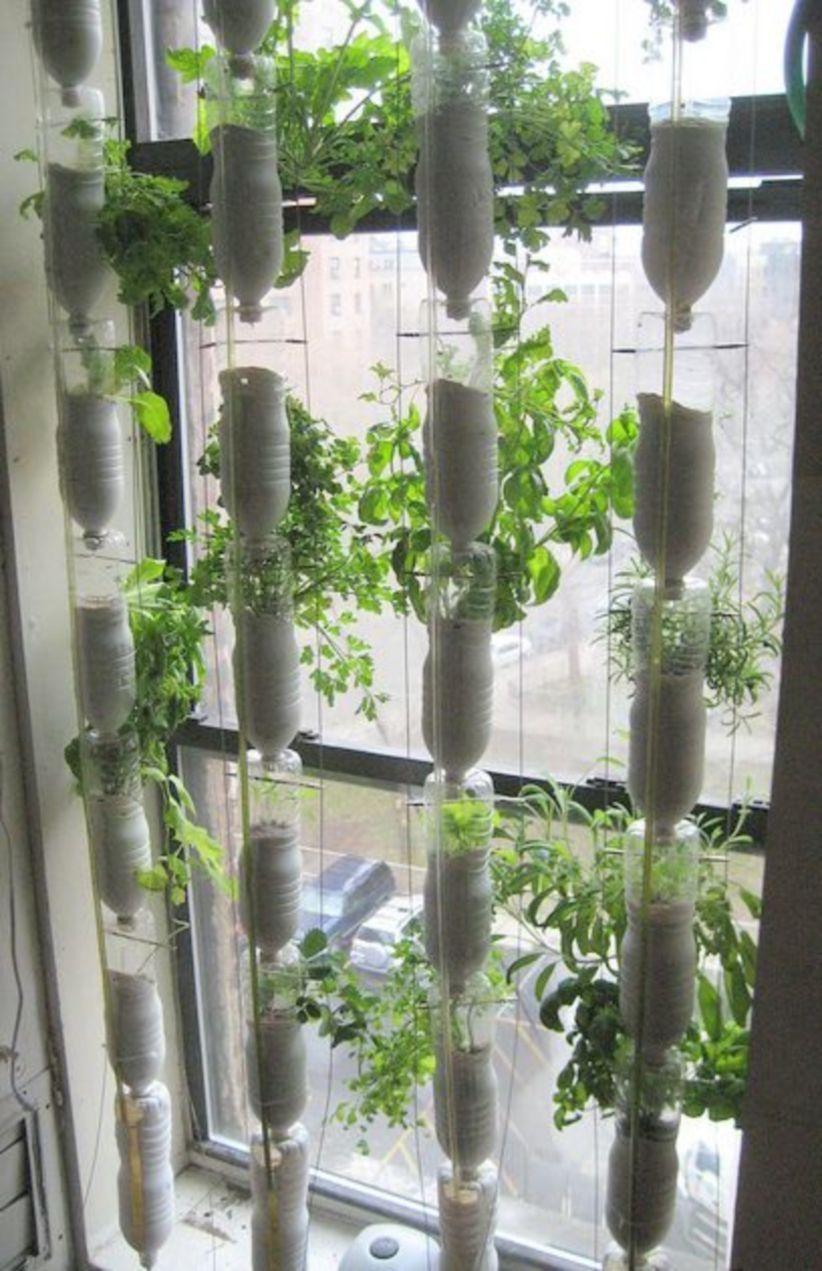 Hydroponic Window Garden Diy