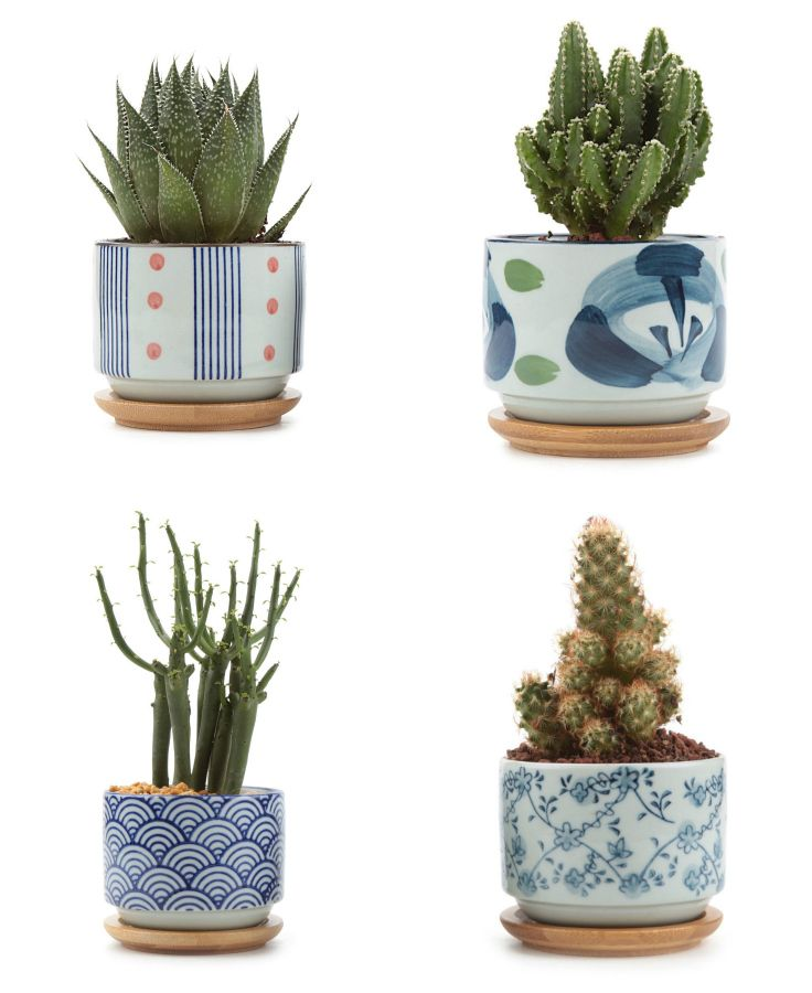 I Love These Planters So Many Different Designs Aff Flower Pots Cactus Plant Pots Home Decor Inspiration