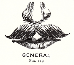 General - Art and Craft of Hairdressing