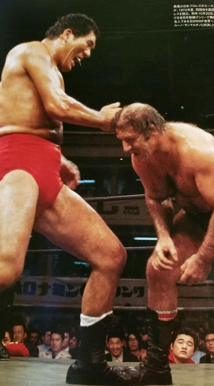 WWE BRUNO SAMMARTINO FIGURE FLASHBACK ELITE 25 WRESTLING FIRST IN LINE HOF WWF