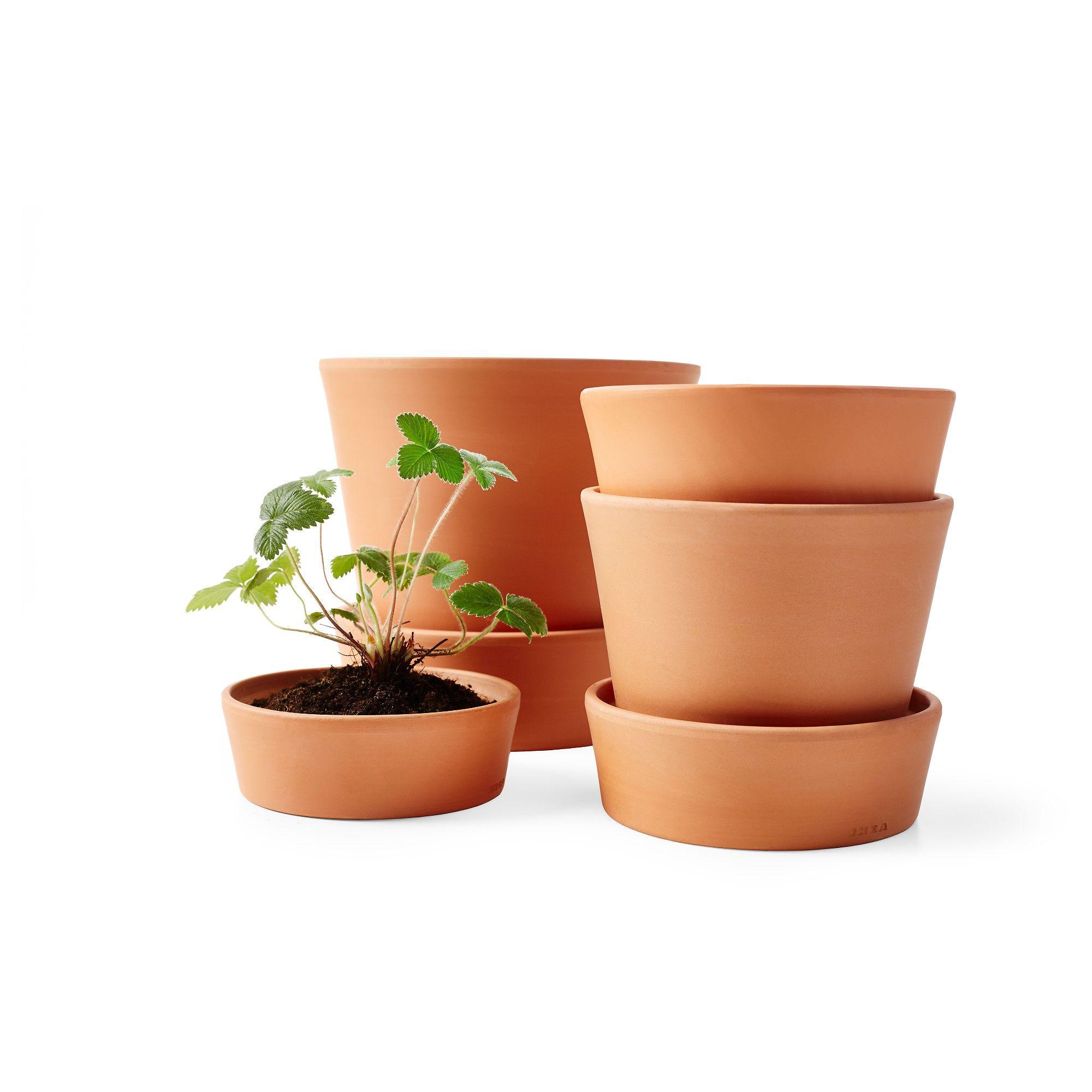 Balcony Planter Ikea IngefÄra Plant Pot With Saucer Outdoor Indoor Outdoor
