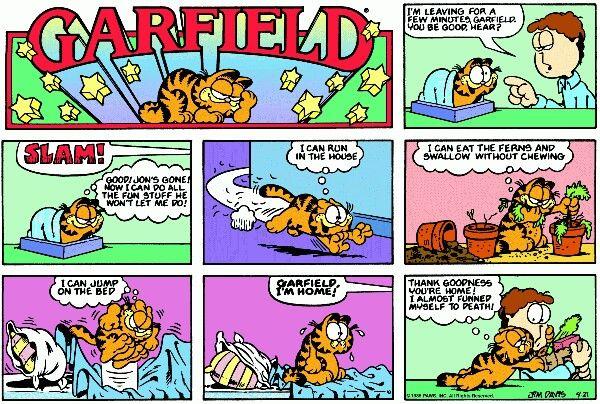 Alone At Home Garfield Comic Cat Cat Gattino Carino Garfield Comic Il Meglio Di Thebestof Garfield Comics Comic Strips Comics