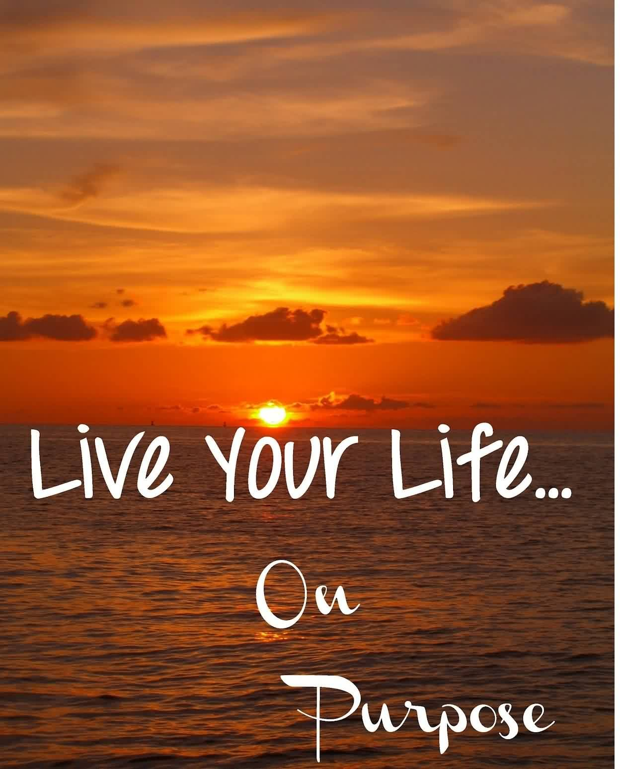 Color Your Life Quotes Living With Purpose Quotes  Google Search  Being An Everyday