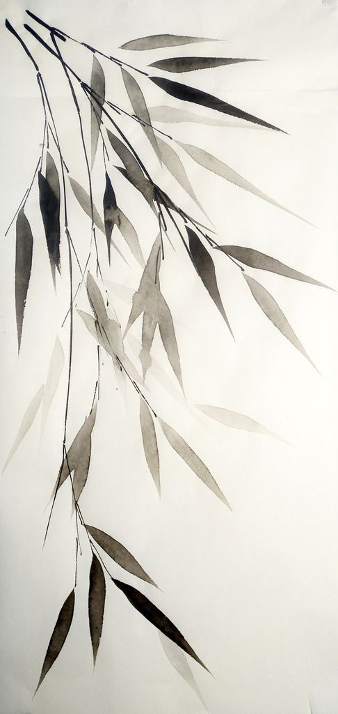 Bamboo Leaves On White Pen Ink Drawing Valeria Viscardi