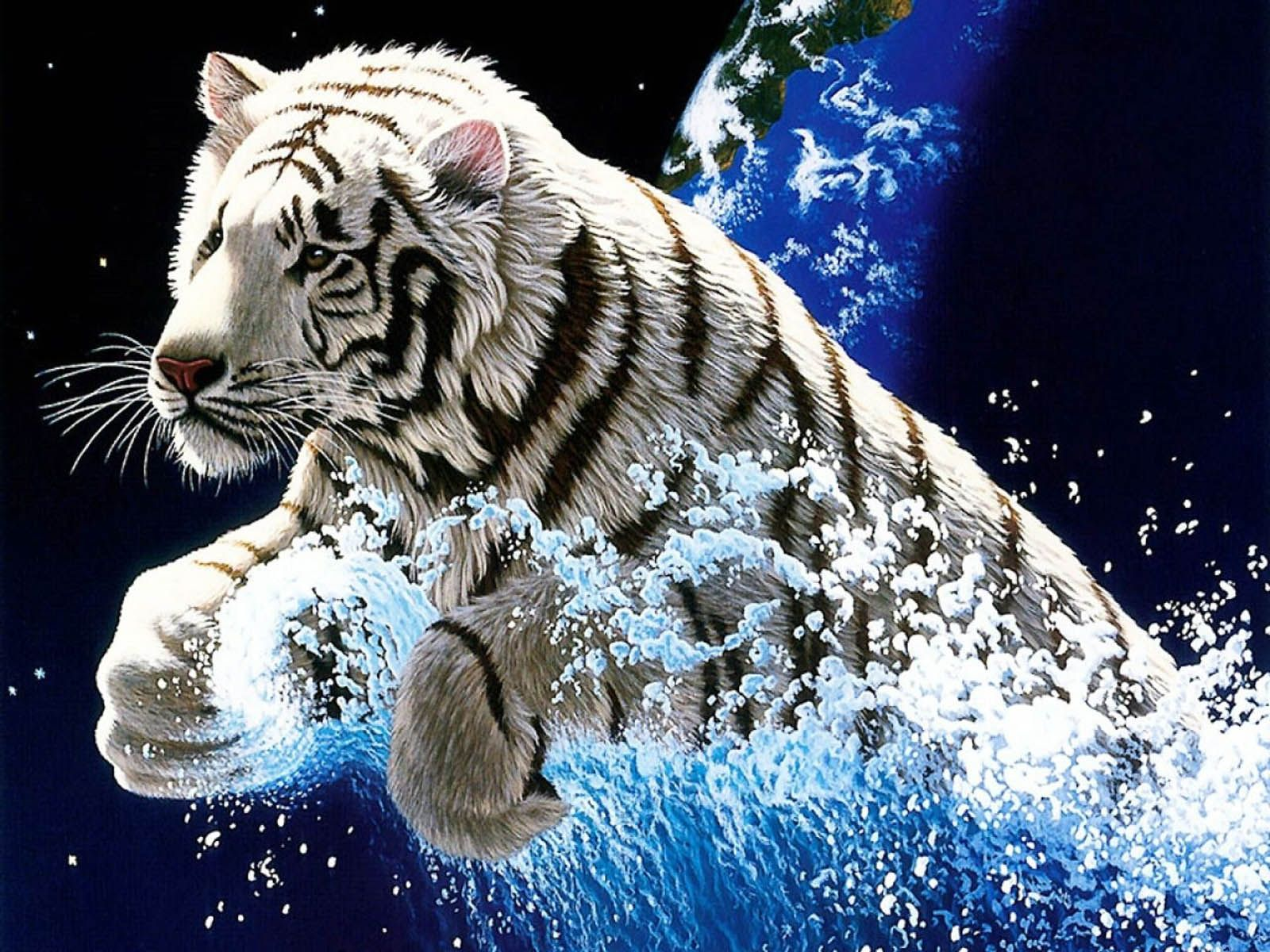 Desktop Year Of The Tiger Images Wallpaper Download 3d Hd Colour