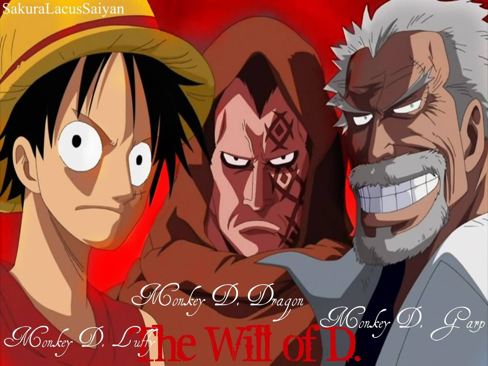 One Piece Monkey D Luffy Skulls Wanted Flag Worldwide Free