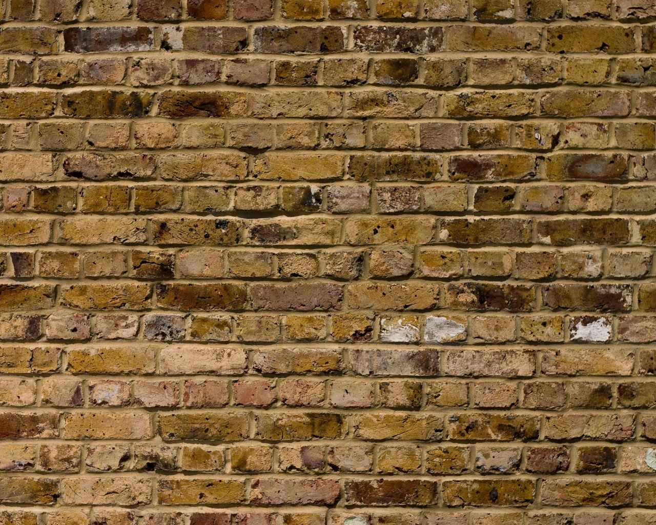 Old Brick Wall Download Photo Background Texture Old Brick Wall Brick Wall Wallpaper Brick Wallpaper Brick Wallpaper Hd