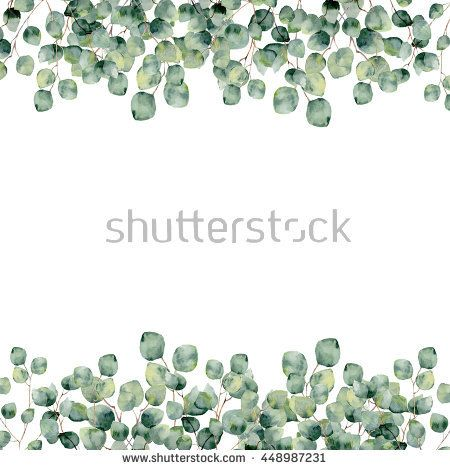 Watercolor green floral frame card with silver dollar eucalyptus round leaves. Hand painted border with branches and leaves of baby eucalyptus isolated on white background. For design or background