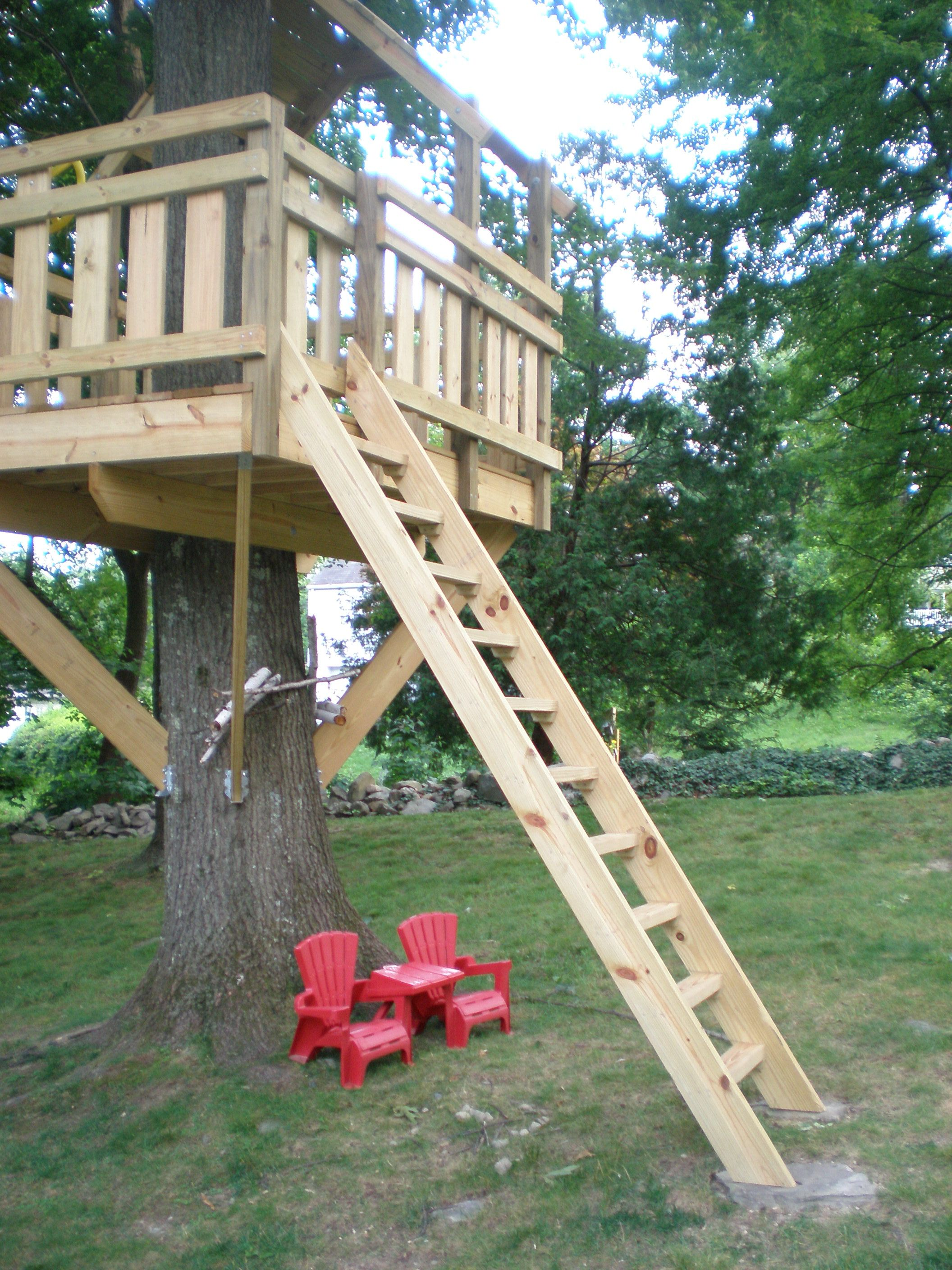 Tree Fort Ladder Gate Roof Finale Tree House Diy Tree House