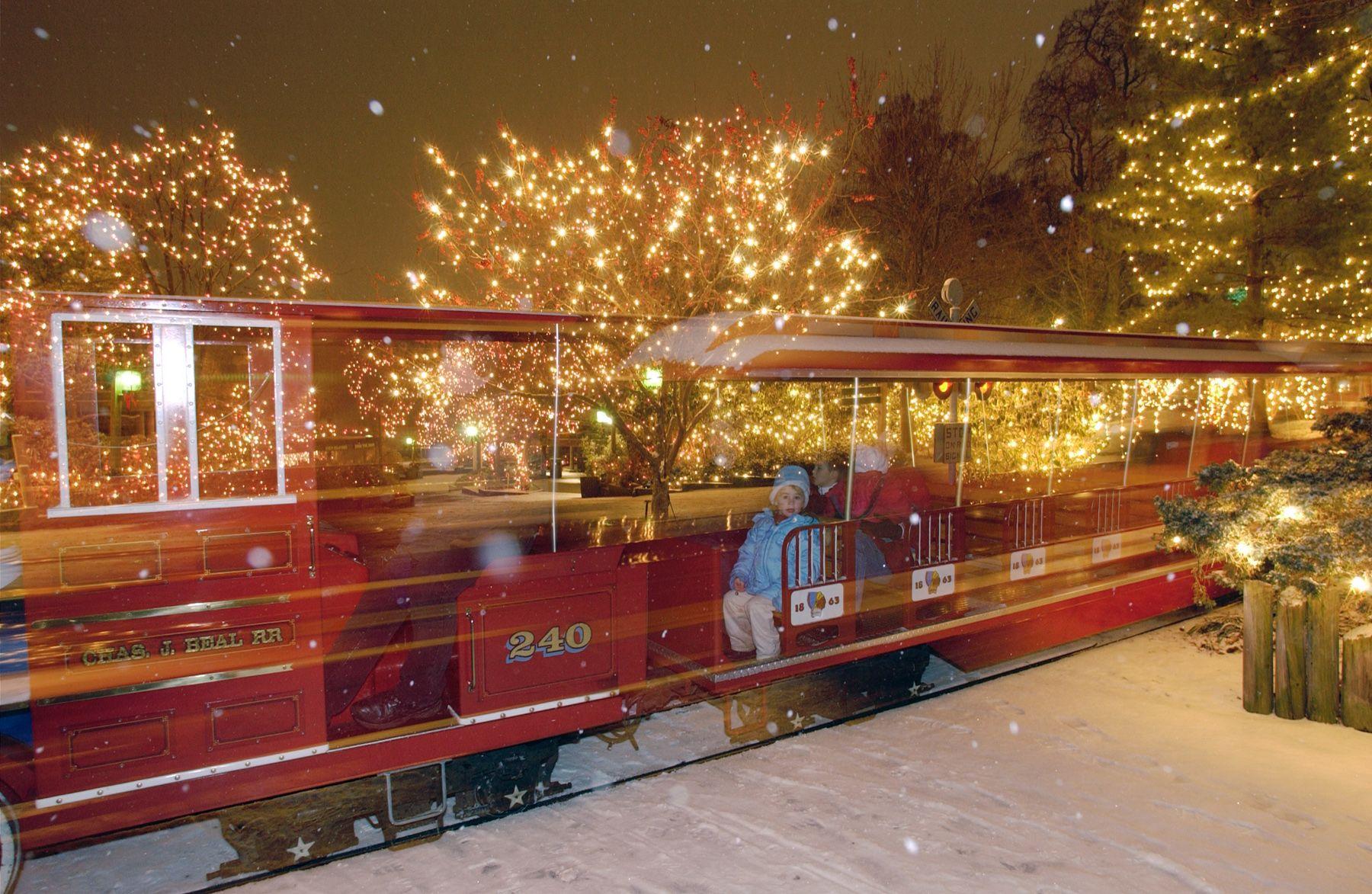 train rides pnc festival of lights pinterest train rides