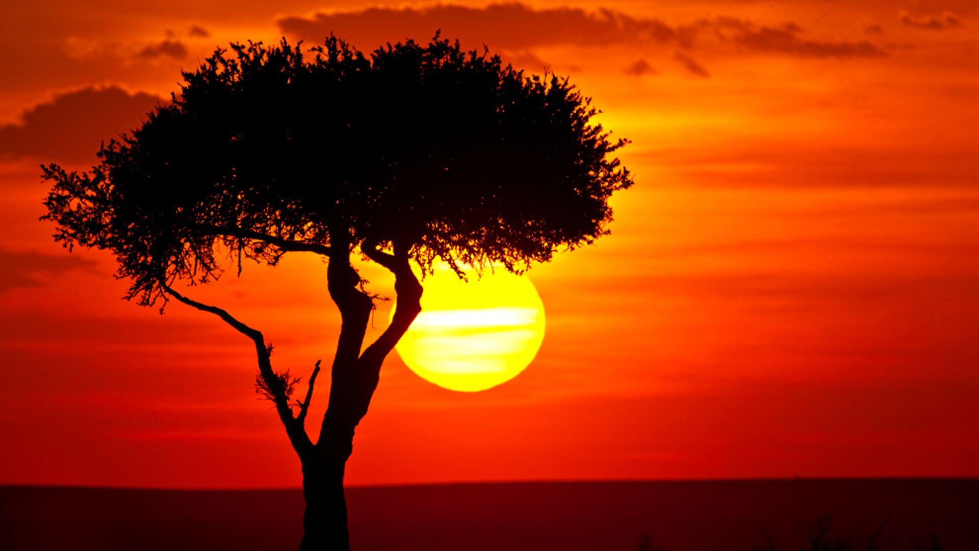 Pin De Elizabeth Wintering En Photography Fotos Pintura Atardeceres Dibujos Paisajes De Africa