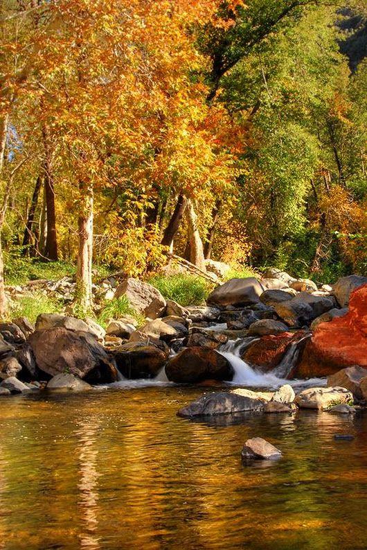 Cathedral Rock (Sedona) Fall scene by Mike Lentz | Scenic ...  |Sedona Fall Scene