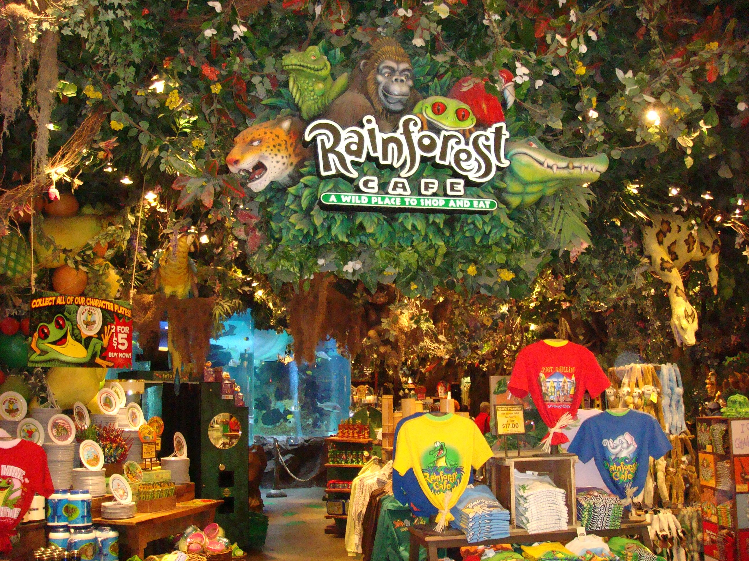 The kids never get tired of this place. Rainforest cafe