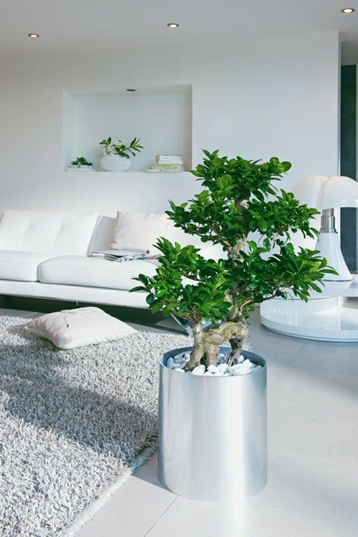 1001 Designs Superbes Pour Un Salon Feng Shui Salon Salons