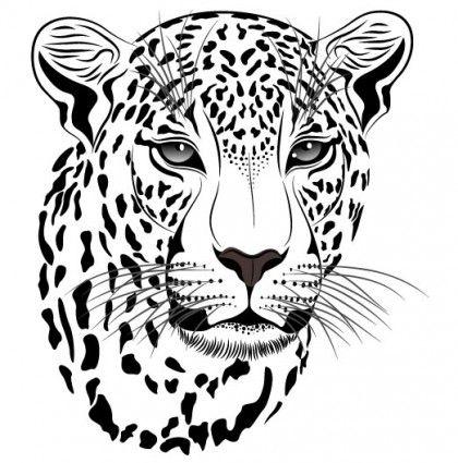 the tiger picture 14 vector   jaguar   Pinterest   Dibujos, Leopardo ...