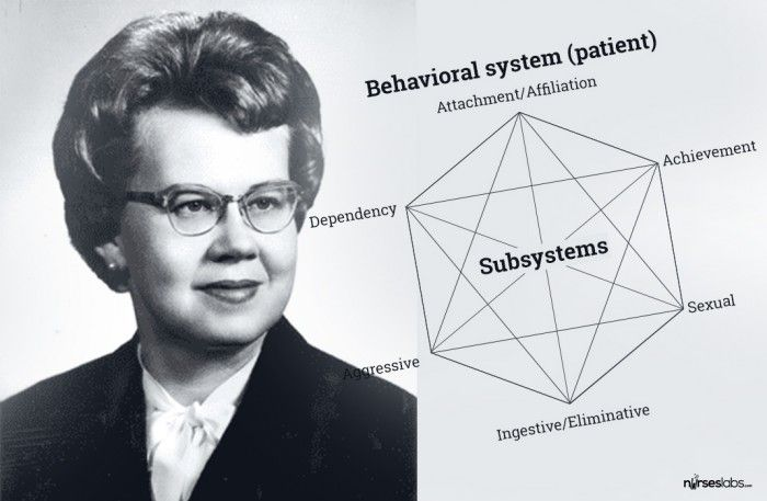 behavioral systems theory