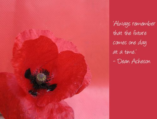 Poppy flower quotes google search poppies pinterest poppy flower quotes google search mightylinksfo