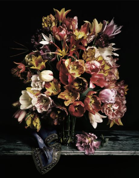 Guido Mocafico – Italian Photographer Inspired by 17th Century Dutch Master Still Life Painting