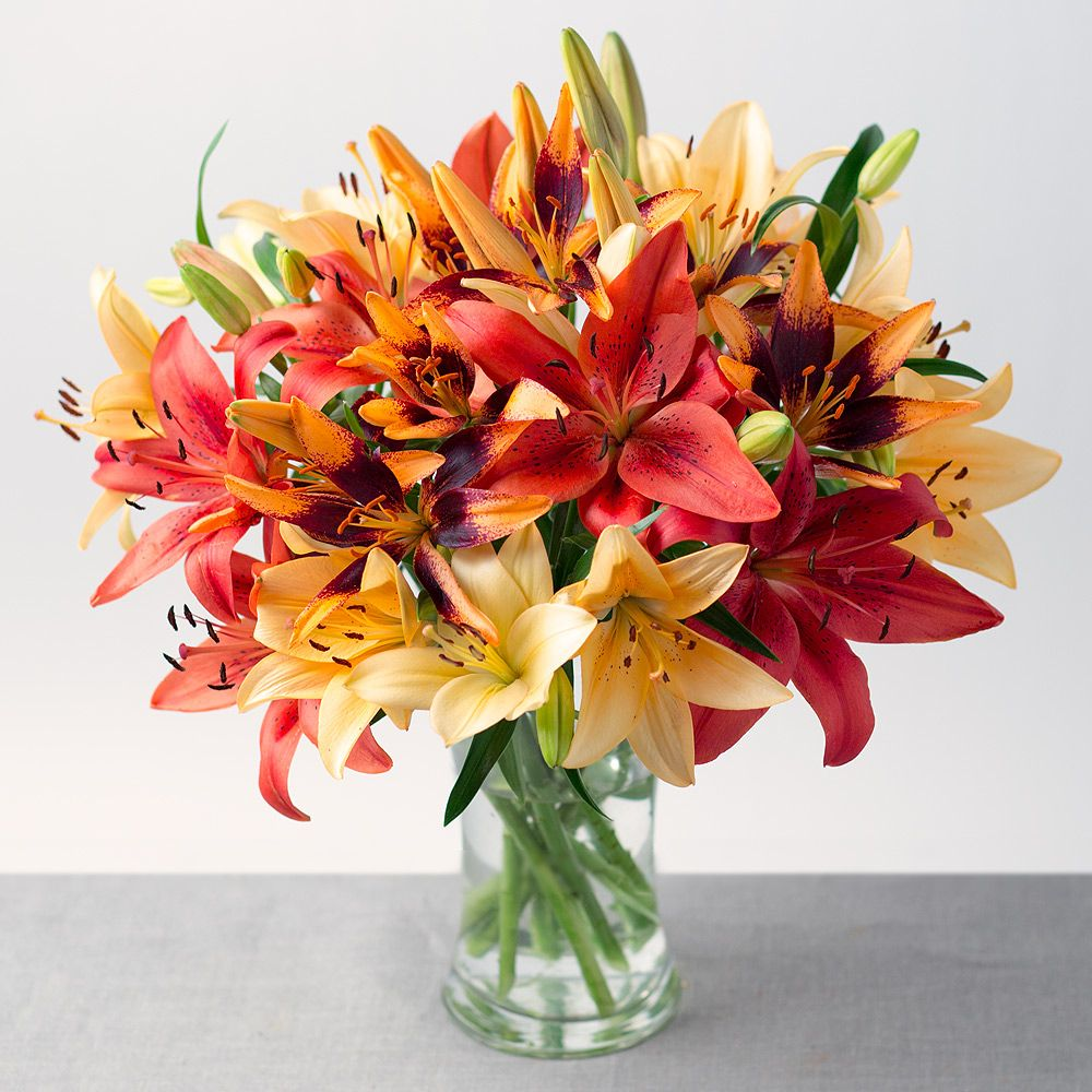 Send Flowers to Mumbai Flower delivery, Online flower