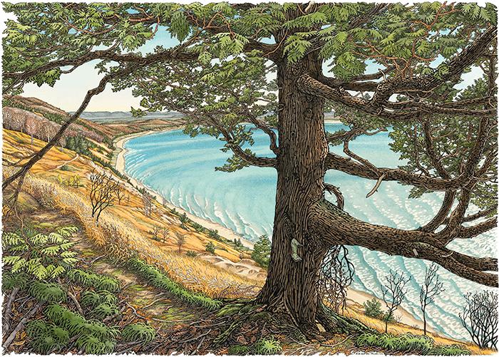 Cedar Bluff Trail Print Watercolor print, Prints, Fine art