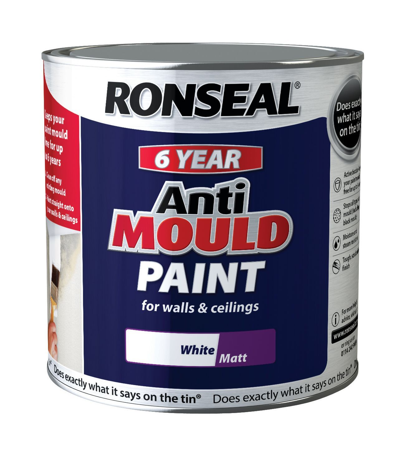 Ronseal Problem Wall Paints White Matt Anti Mould Paint 2 5l Departments Diy At B Q Mold In Bathroom Bathroom Mold Remover White Painting