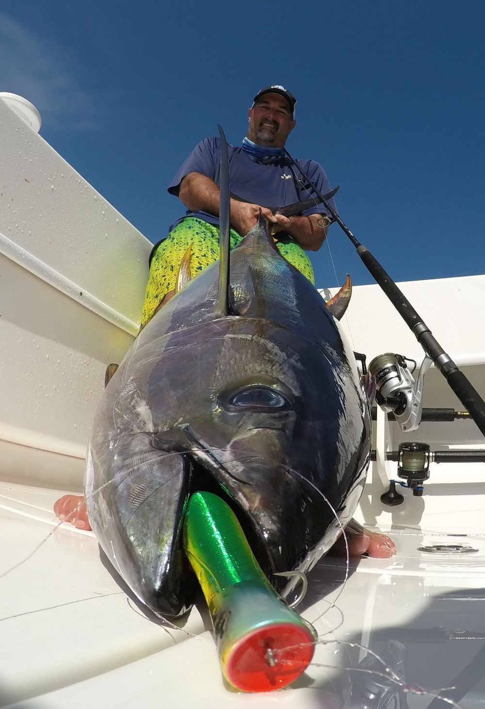 Yellowfin tuna on a popper, Costa Rica Fishing vacation