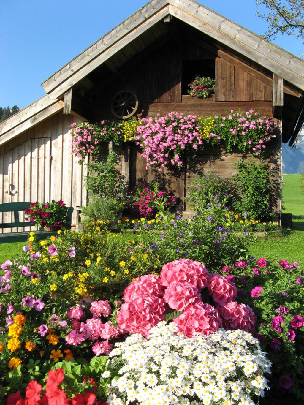 Mein Schoner Garten Zum Entspannen Jardines Jardineria Rosas